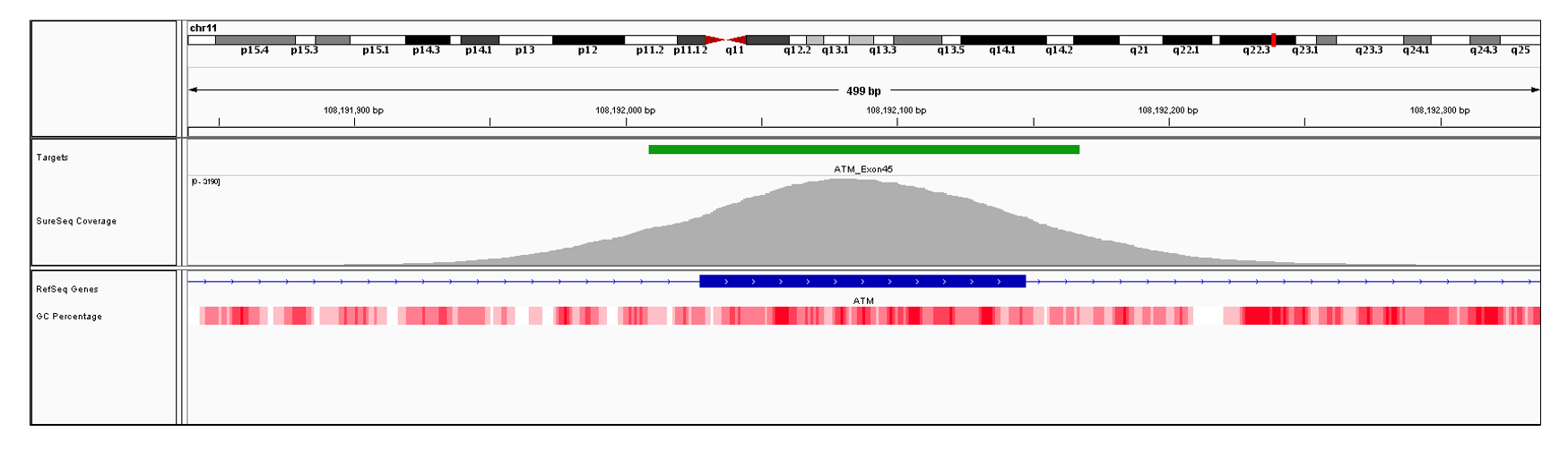 ATM Exon 45 (hg19 chr11:108192028-108192147). Depth of coverage per base (grey). Targeted region (green). Gene coding region as defined by RefSeq (blue). GC percentage (red). Image