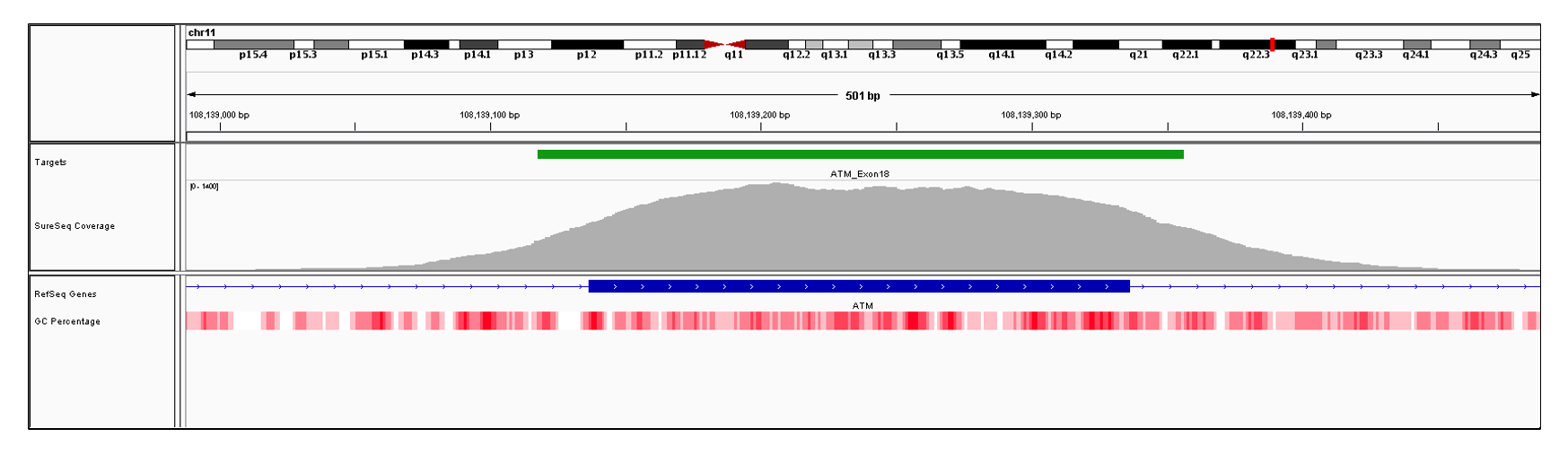 ATM Exon 18 (hg19 chr11:108139137-180139336). Depth of coverage per base (grey). Targeted region (green). Gene coding region as defined by RefSeq (blue). GC percentage (red). Image