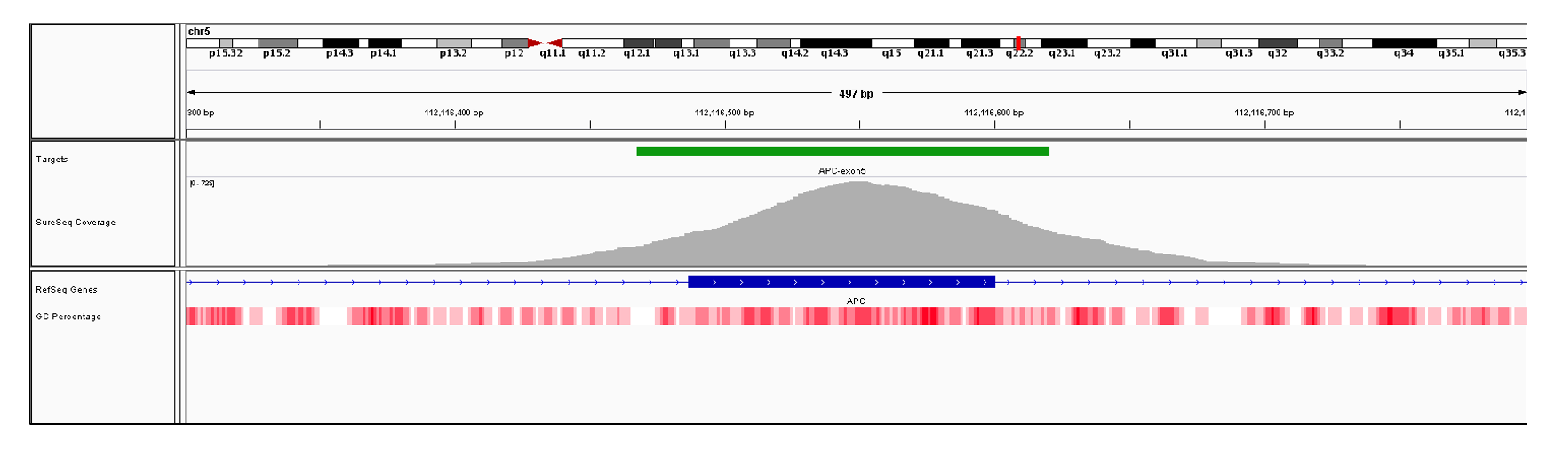 APC Exon 5 (hg19 chr5:112116487-112116600). Depth of coverage per base (grey). Targeted region (green). Gene coding region as defined by RefSeq (blue). GC percentage (red). Image