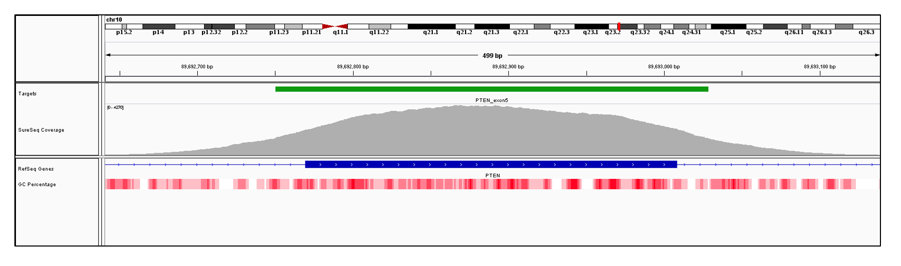PTEN Exon 5 (hg19 chr10:89692770-89693008). Depth of coverage per base (grey). Targeted region (green). Gene coding region as defined by RefSeq (blue). GC percentage (red). Image