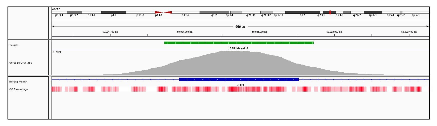 BRIP1 Exon 15 (hg19 chr17:59821793-59821952). Depth of coverage per base (grey). Targeted region (green). Gene coding region as defined by RefSeq (blue). GC percentage (red). Image