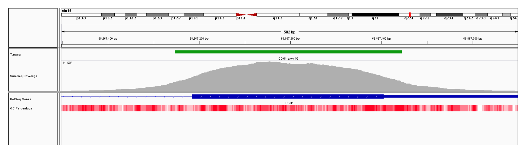 CDH1 Exon 16 (hg19 chr16:68867193-68869444). Depth of coverage per base (grey). Targeted region (green). Gene coding region as defined by RefSeq (blue). GC percentage (red). Image
