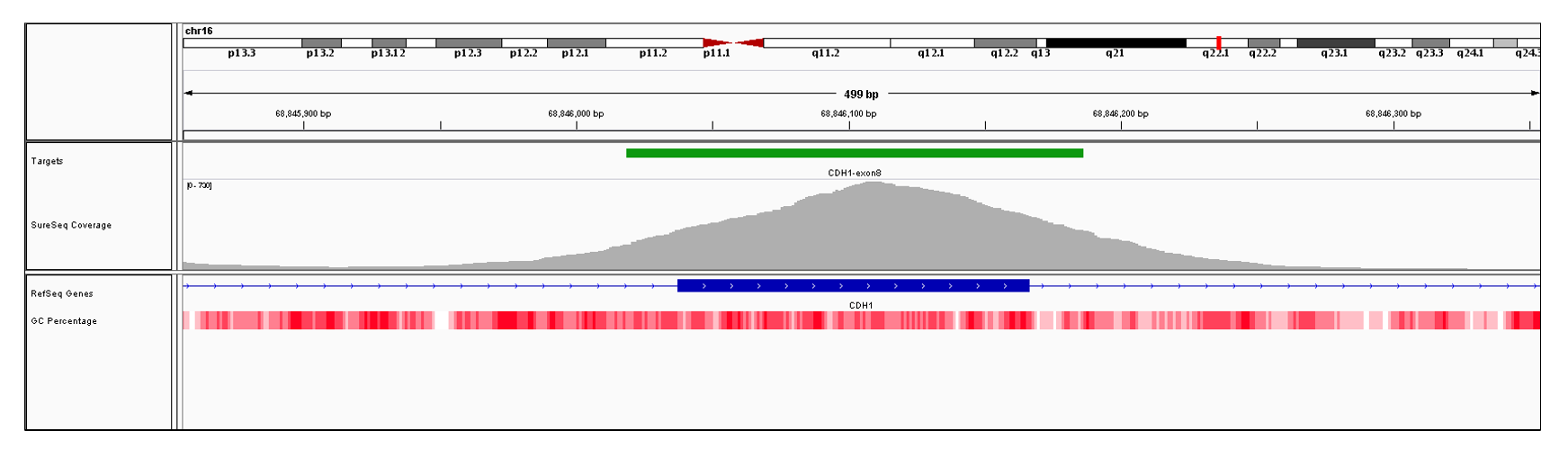CDH1 Exon 8 (hg19 chr16:68846038-68846166). Depth of coverage per base (grey). Targeted region (green). Gene coding region as defined by RefSeq (blue). GC percentage (red). Image