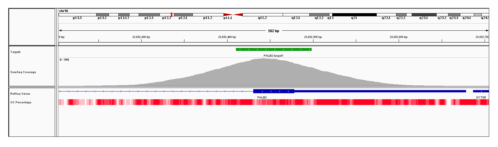 PALB2 Exon 1 (hg19 chr16:23652431-23652678). Depth of coverage per base (grey). Targeted region (green). Gene coding region as defined by RefSeq (blue). GC percentage (red). Image