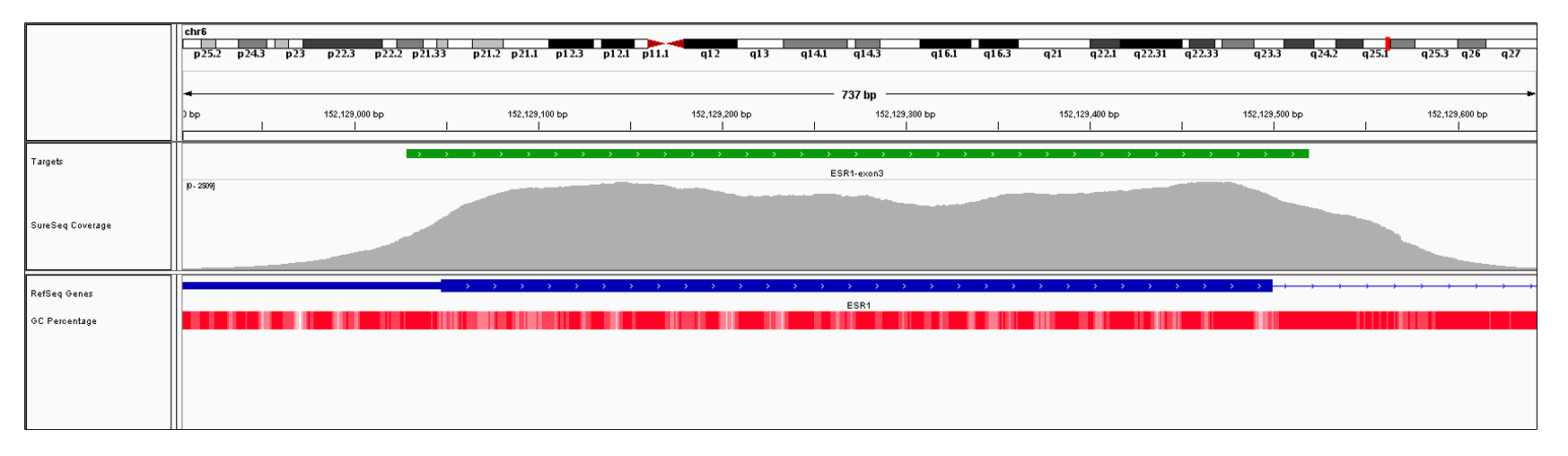 ESR1 Exon 3 (hg19 chr6:152128978-152129499). Depth of coverage per base (grey). Targeted region (green). Gene coding region as defined by RefSeq (blue). GC percentage (red). Image