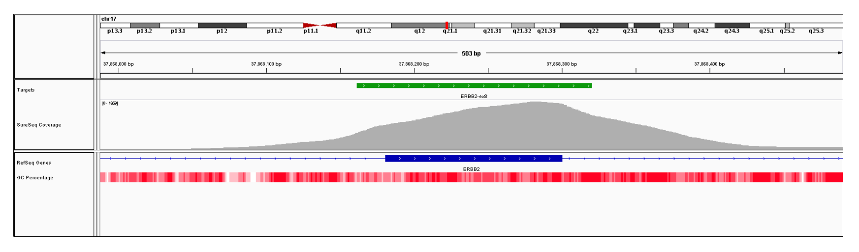 ERBB2 Exon 8 (hg19 chr17:37868181-37868300). Depth of coverage per base (grey). Targeted region (green). Gene coding region as defined by RefSeq (blue). GC percentage (red). Image