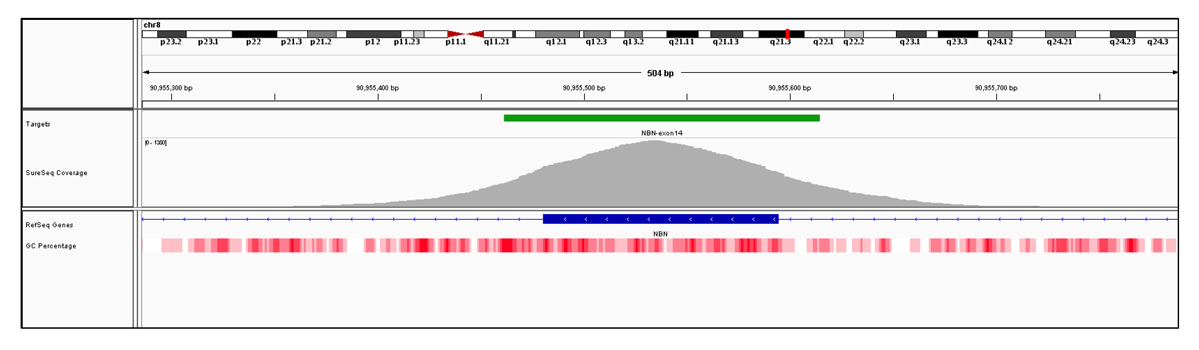 NBN Exon 14 (hg19 chr8:90955481-90955594). Depth of coverage per base (grey). Targeted region (green). Gene coding region as defined by RefSeq (blue). GC percentage (red). Image