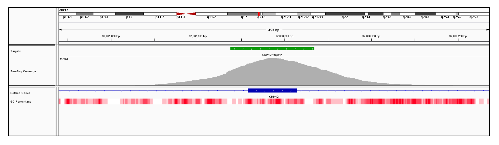 CDK12 Exon 7 (hg19 chr17:37665958-37666014). Depth of coverage per base (grey). Targeted region (green). Gene coding region as defined by RefSeq (blue). GC percentage (red). Image