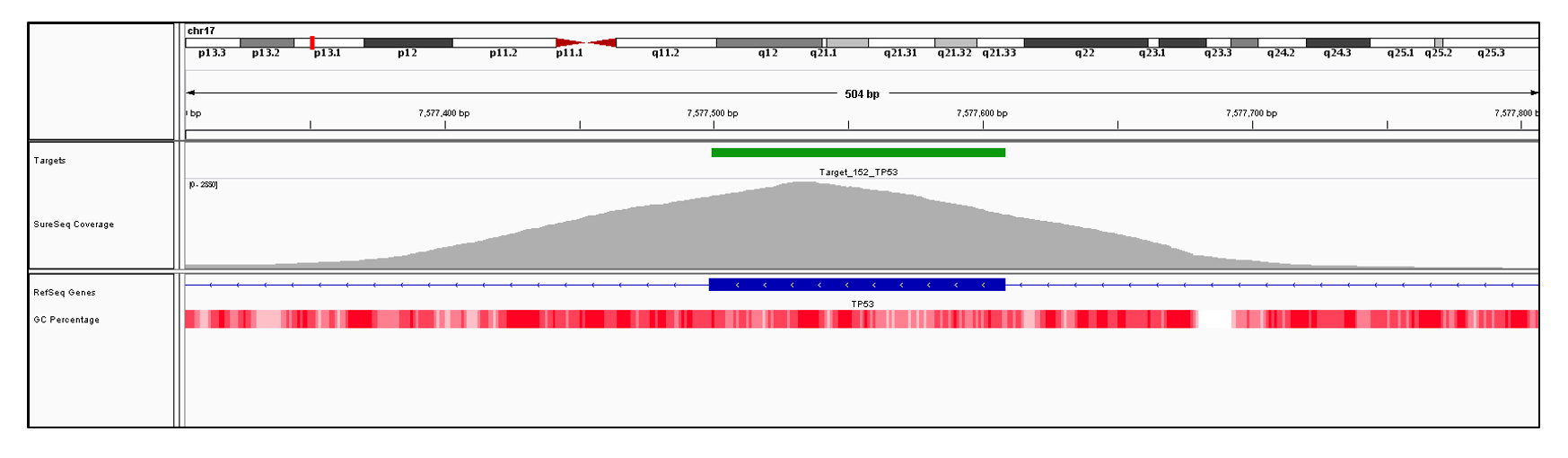 TP53 Exon 7 (hg19 chr17:7577499-7577608). Depth of coverage per base (grey). Targeted region (green). Gene coding region as defined by RefSeq (blue). GC percentage (red). Image