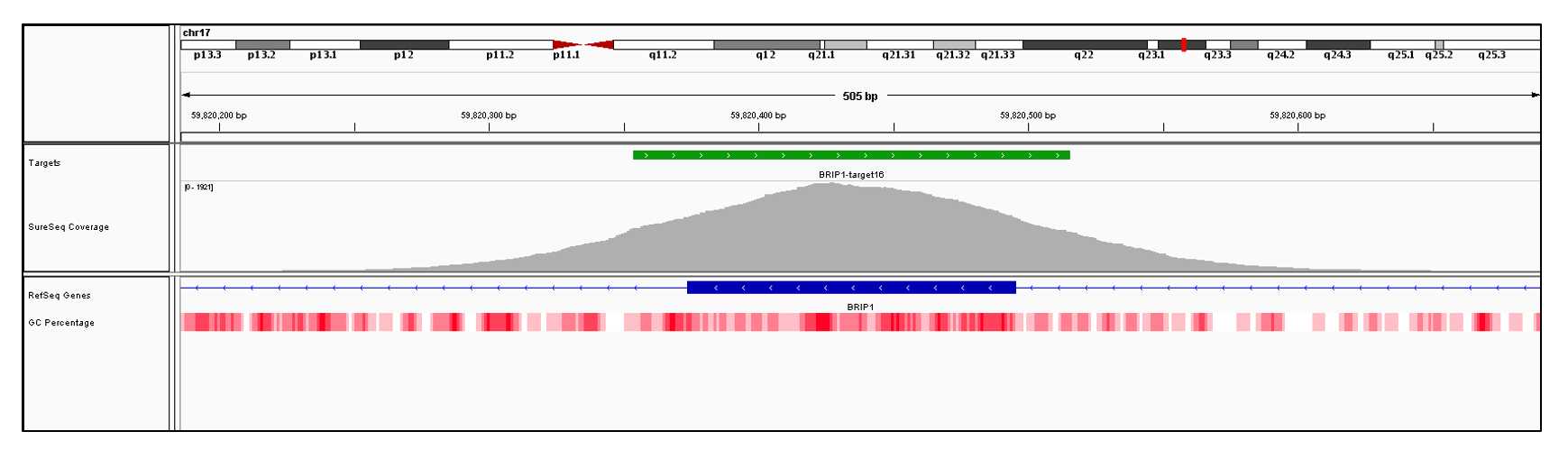 BRIP1 Exon 16 (hg19 chr17:59820374-59820495). Depth of coverage per base (grey). Targeted region (green). Gene coding region as defined by RefSeq (blue). GC percentage (red). Image