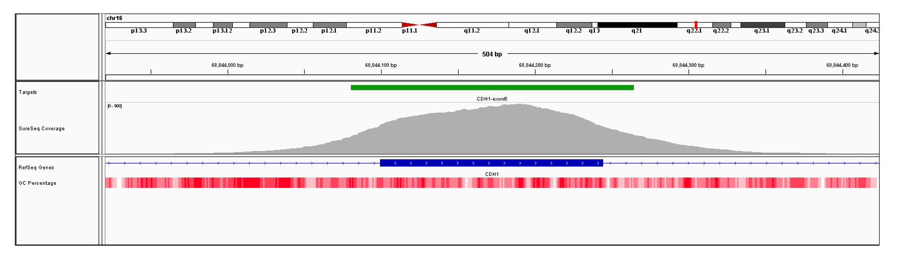 CDH1 Exon 6 (hg19 chr16:68844100-68844244). Depth of coverage per base (grey). Targeted region (green). Gene coding region as defined by RefSeq (blue). GC percentage (red). Image