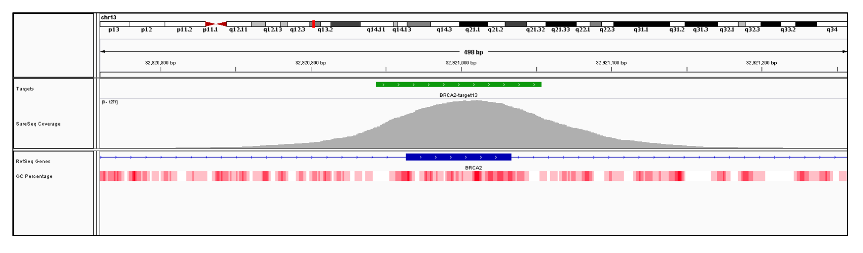 BRCA2 Exon 13 (hg19 chr13:32920964-32921033). Depth of coverage per base (grey). Targeted region (green). Gene coding region as defined by RefSeq (blue). GC percentage (red). Image