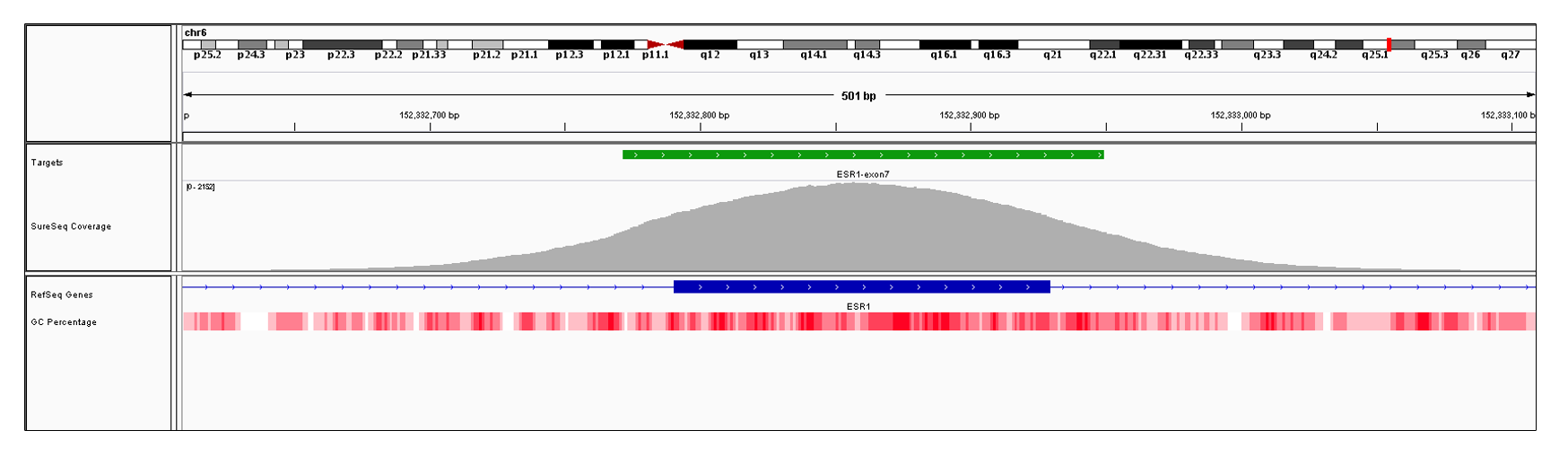 ESR1 Exon 7 (hg19 chr6:152332791-152332929). Depth of coverage per base (grey). Targeted region (green). Gene coding region as defined by RefSeq (blue). GC percentage (red). Image