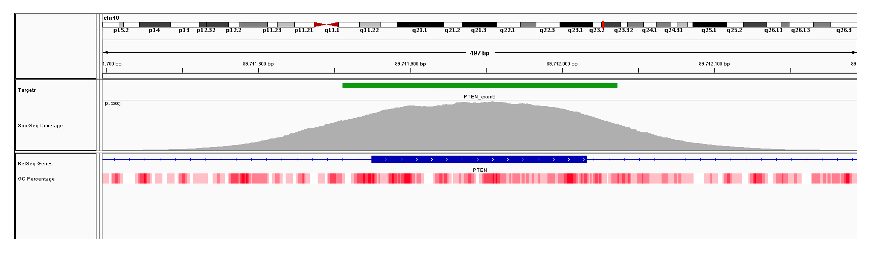 PTEN Exon 6 (hg19 chr10:89711875-89712016). Depth of coverage per base (grey). Targeted region (green). Gene coding region as defined by RefSeq (blue). GC percentage (red). Image
