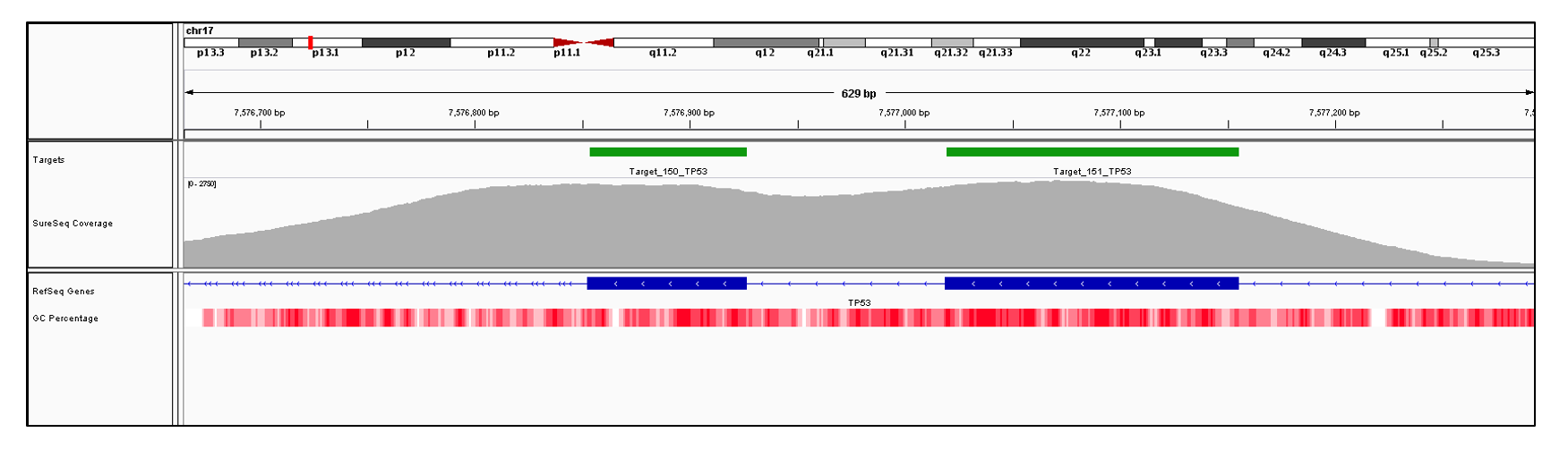 TP53 Exon 8 (hg19 chr17:7577019-7577155) and 9 (hg19 chr17:7576853-7576926). Depth of coverage per base (grey). Targeted region (green). Gene coding region as defined by RefSeq (blue). GC percentage (red). Image