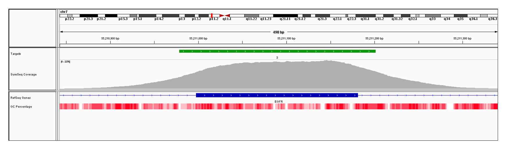 EGFR Exon 3 (hg19 chr7:55210998-55211181). Depth of coverage per base (grey). Targeted region (green). Gene coding region as defined by RefSeq (blue). GC percentage (red). Image