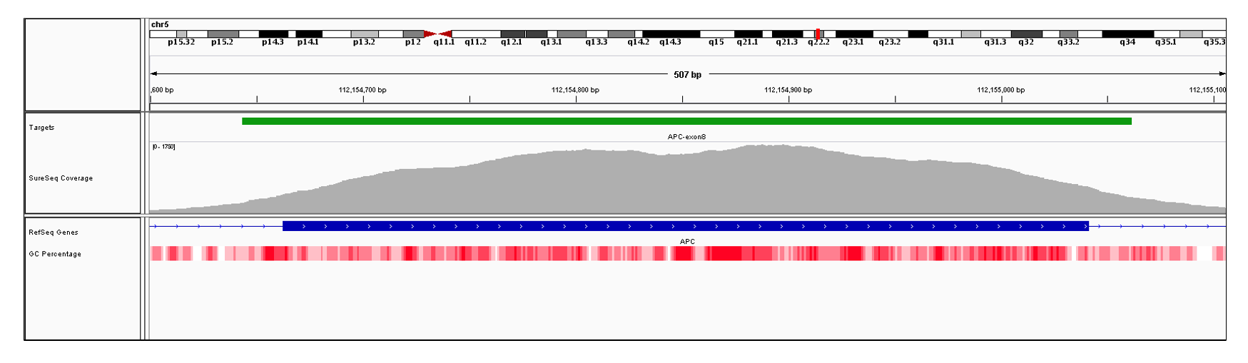 APC Exon 8 (hg19 chr5:112154663-112155041). Depth of coverage per base (grey). Targeted region (green). Gene coding region as defined by RefSeq (blue). GC percentage (red). Image