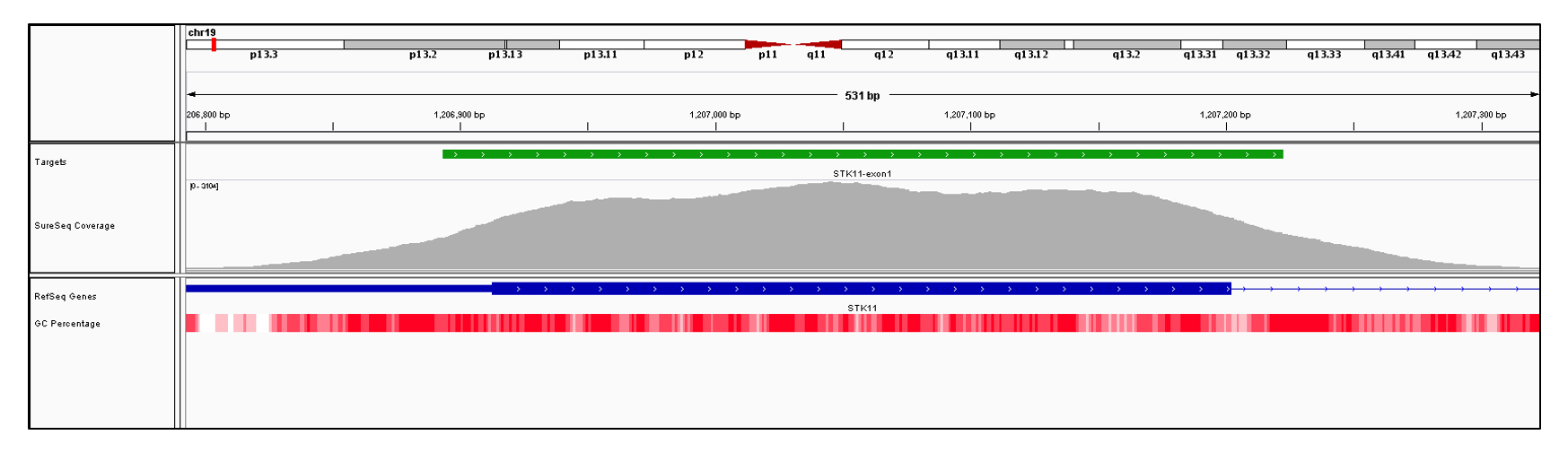STK11 Exon 1 (hg19 chr19:1205798-1207202). Depth of coverage per base (grey). Targeted region (green). Gene coding region as defined by RefSeq (blue). GC percentage (red). Image