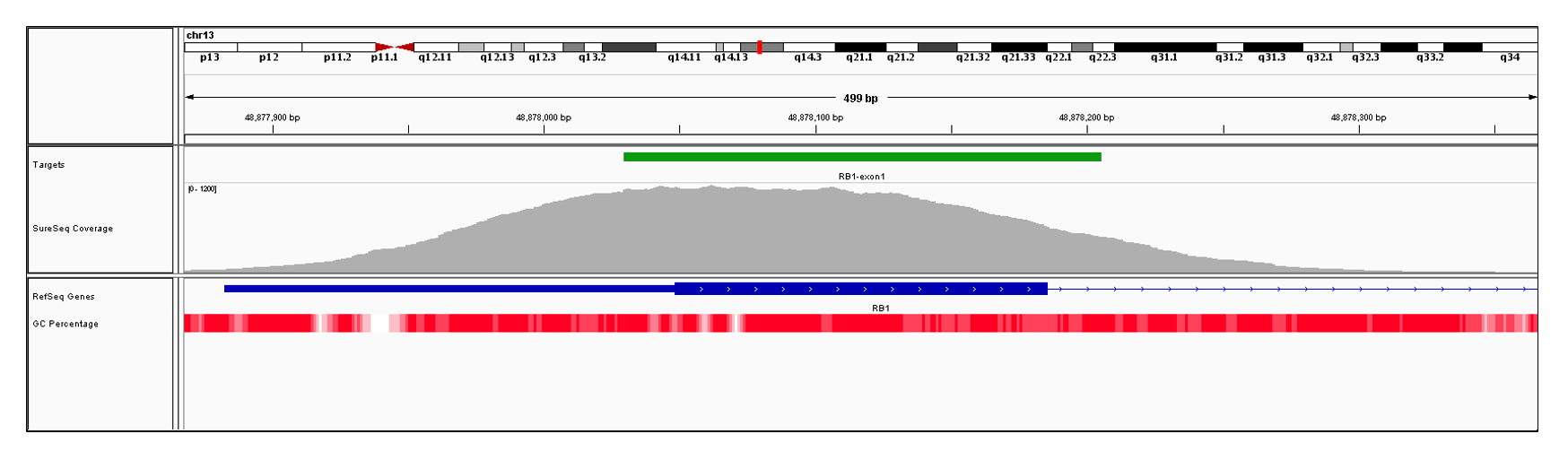 RB1 Exon 1 (hg19 chr13:48877883-48878185). Depth of coverage per base (grey). Targeted region (green). Gene coding region as defined by RefSeq (blue). GC percentage (red). Image