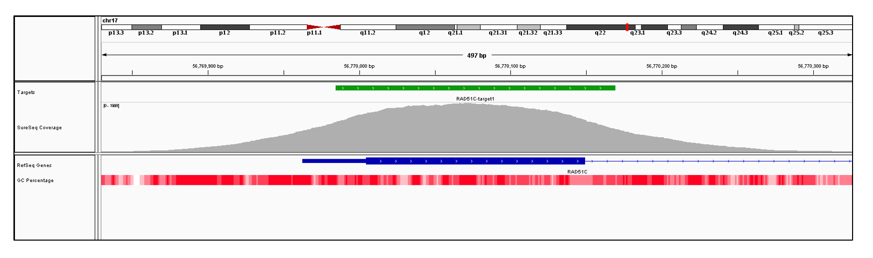RAD51C Exon 1 (hg19 chr17:56769963-56770149). Depth of coverage per base (grey). Targeted region (green). Gene coding region as defined by RefSeq (blue). GC percentage (red). Image