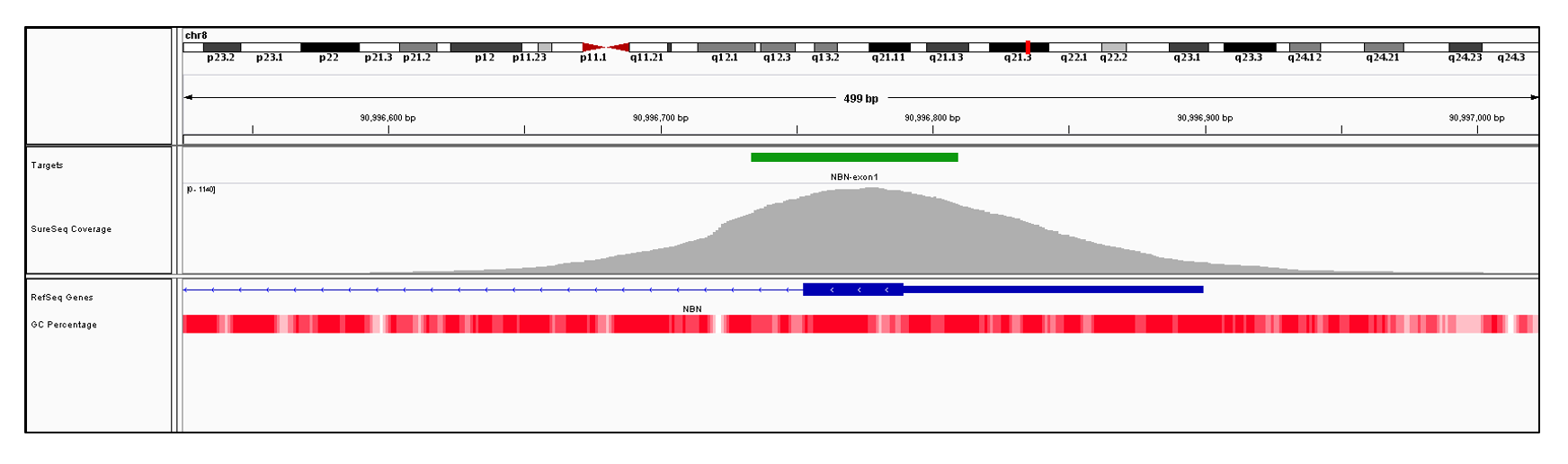 NBN Exon 1 (hg19 chr8:90996753-90996899). Depth of coverage per base (grey). Targeted region (green). Gene coding region as defined by RefSeq (blue). GC percentage (red). Image