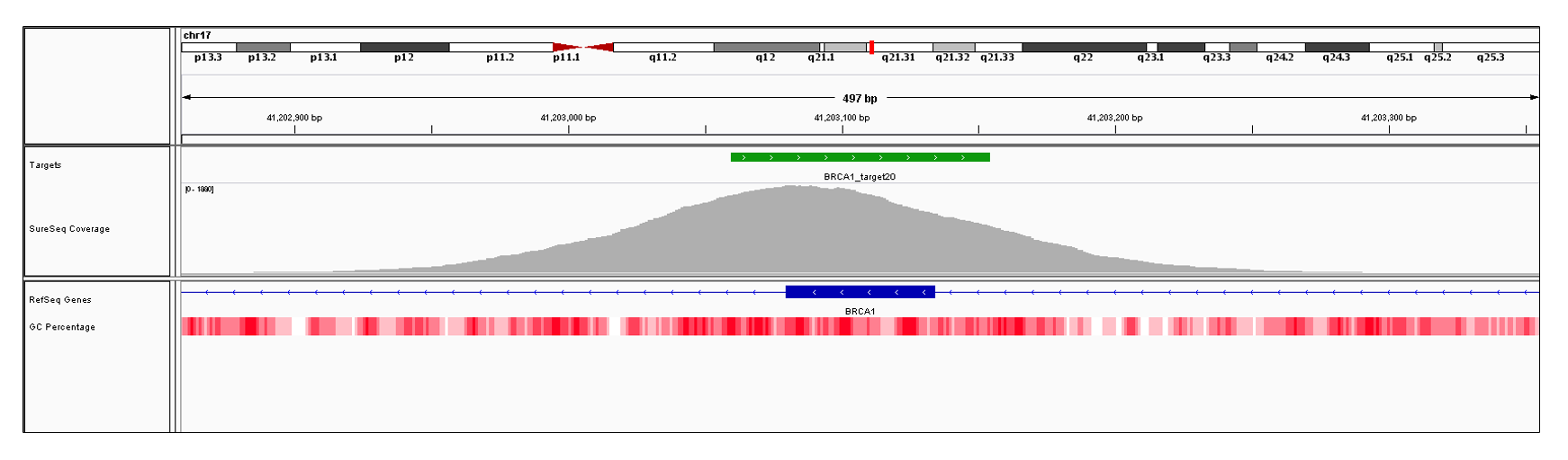 BRCA1 Exon 20 (hg19 chr17:41203080-41203134). Depth of coverage per base (grey). Targeted region (green). Gene coding region as defined by RefSeq (blue). GC percentage (red). Image
