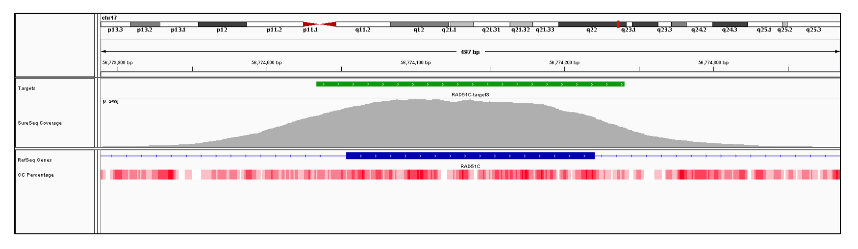 RAD51C Exon 3 (hg19 chr17:56774054-56774220). Depth of coverage per base (grey). Targeted region (green). Gene coding region as defined by RefSeq (blue). GC percentage (red). Image