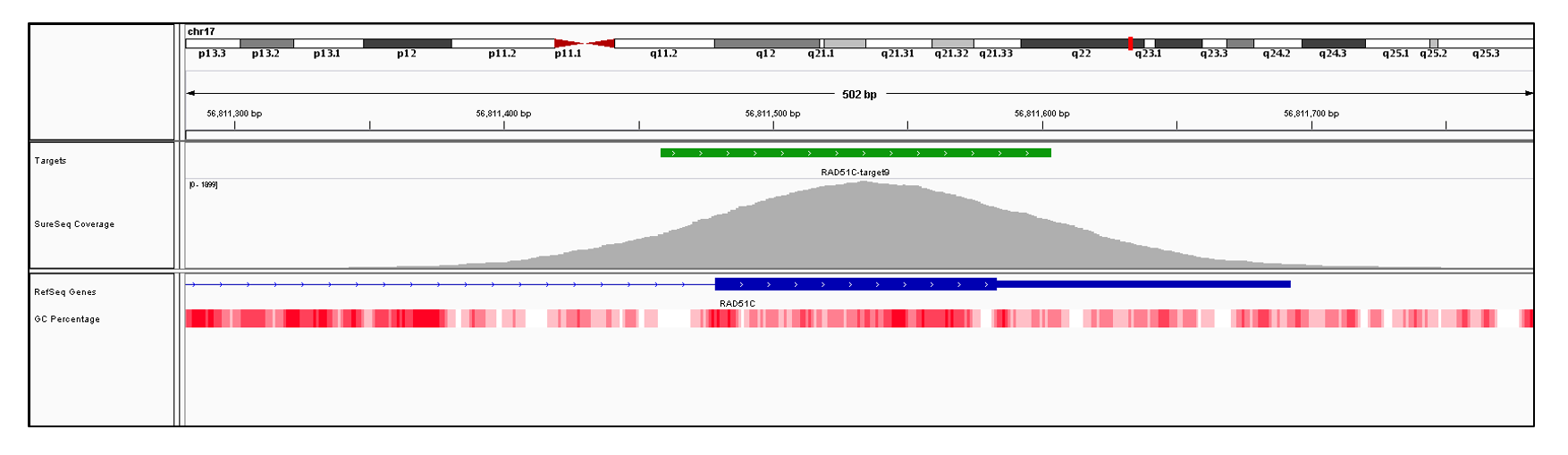 RAD51C Exon 9 (hg19 chr17:56811479-56811692). Depth of coverage per base (grey). Targeted region (green). Gene coding region as defined by RefSeq (blue). GC percentage (red). Image
