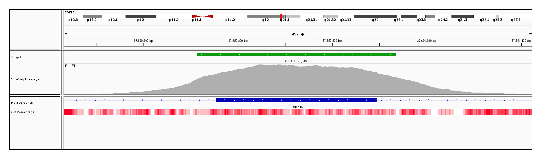 CDK12 Exon 5 (hg19 chr17:37650777-37650947). Depth of coverage per base (grey). Targeted region (green). Gene coding region as defined by RefSeq (blue). GC percentage (red). Image