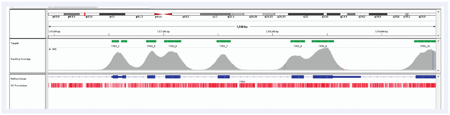 Figure 4: TP53 exons 3 – 9, exceptional uniformity of coverage in spite of the high GC content of the region. Depth of coverage per base (grey). Targeted region (green). Gene coding region as defined by RefSeq (blue). GC percentage (red).