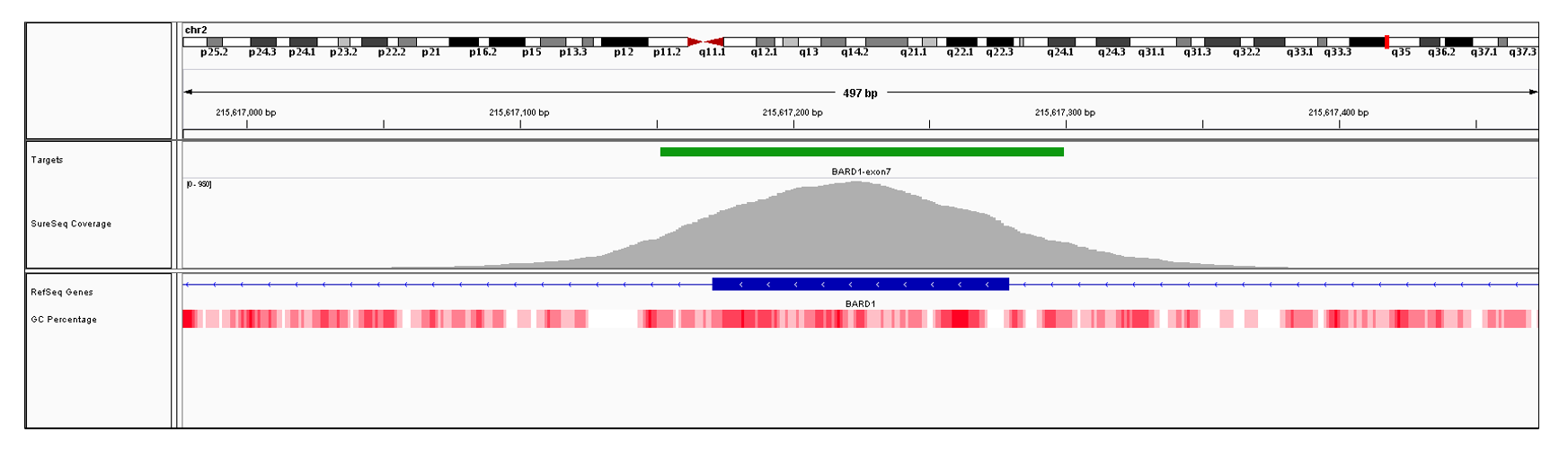 BARD1 Exon 7 (hg19 chr2:215617171-215617279). Depth of coverage per base (grey). Targeted region (green). Gene coding region as defined by RefSeq (blue). GC percentage (red). Image
