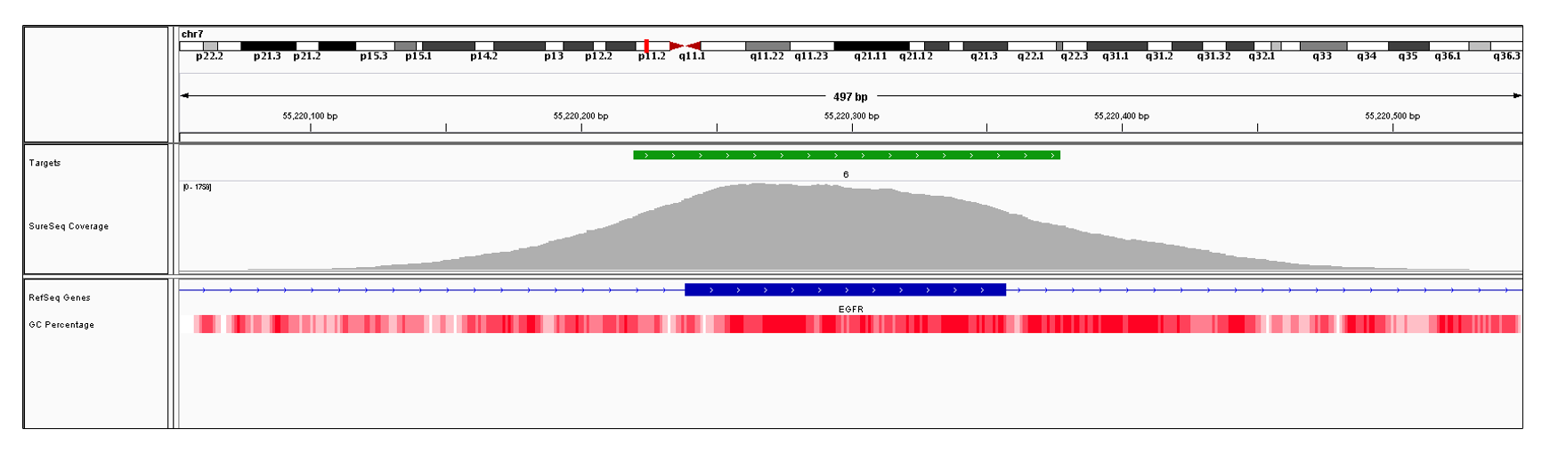 EGFR Exon 6 (hg19 chr7:55220239-55220357). Depth of coverage per base (grey). Targeted region (green). Gene coding region as defined by RefSeq (blue). GC percentage (red). Image