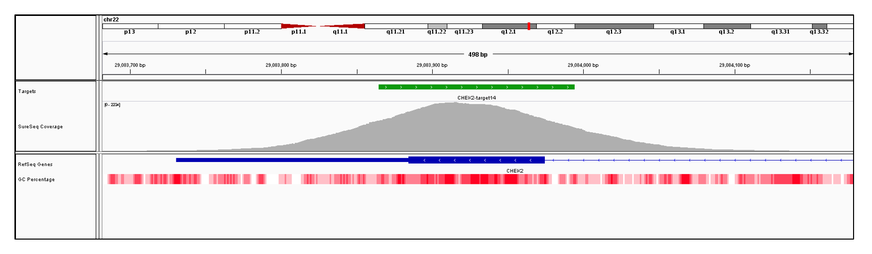 CHEK2 Exon 14 (hg19 chr22:29083731-29083974). Depth of coverage per base (grey). Targeted region (green). Gene coding region as defined by RefSeq (blue). GC percentage (red). Image