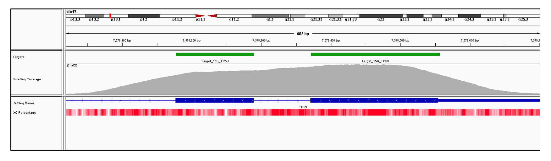 TP53 Exon 5 (hg19 chr17:7578371-7578554) and 6 (hg19 chr17:7578177-7578289). Depth of coverage per base (grey). Targeted region (green). Gene coding region as defined by RefSeq (blue). GC percentage (red). Image