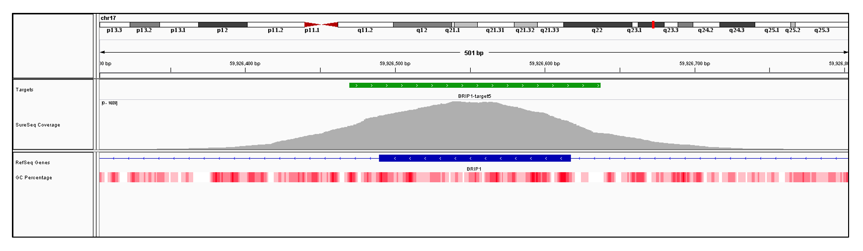 BRIP1 Exon 5 (hg19 chr17:59926490-59926617). Depth of coverage per base (grey). Targeted region (green). Gene coding region as defined by RefSeq (blue). GC percentage (red). Image