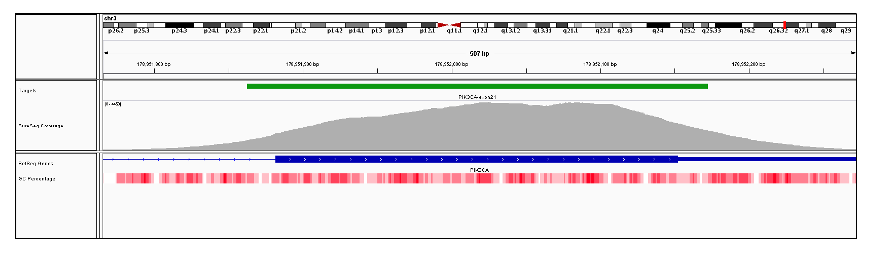 PIK3CA Exon 21 (hg19 chr3:178951882-178952497). Depth of coverage per base (grey). Targeted region (green). Gene coding region as defined by RefSeq (blue). GC percentage (red). Image