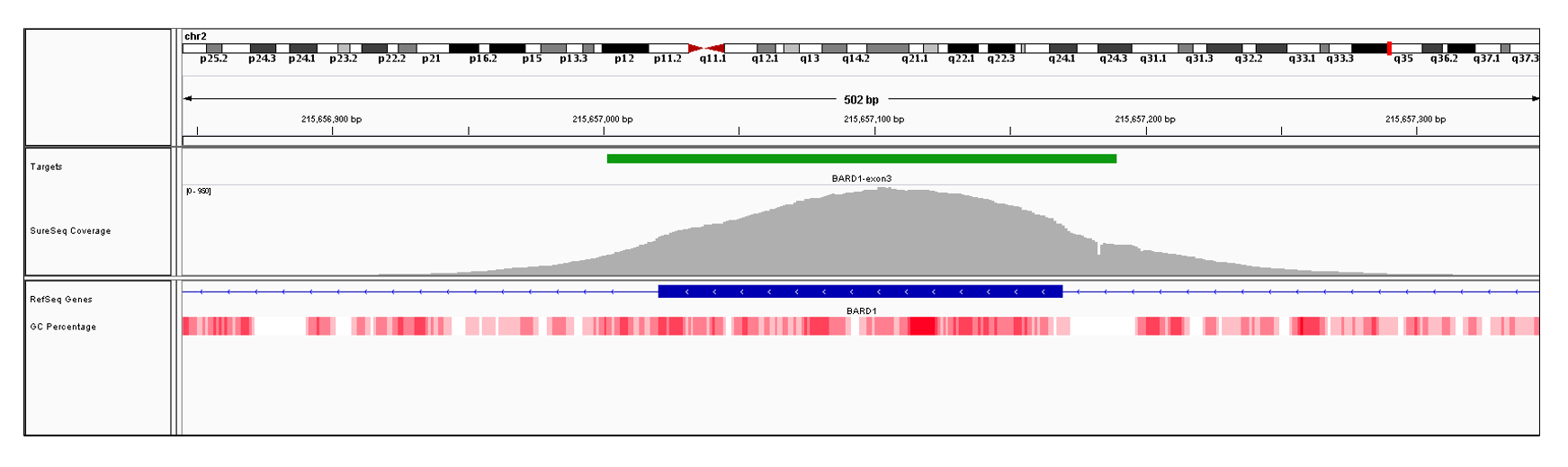 BARD1 Exon 3 (hg19 chr2:215657021-215657169). Depth of coverage per base (grey). Targeted region (green). Gene coding region as defined by RefSeq (blue). GC percentage (red). Image