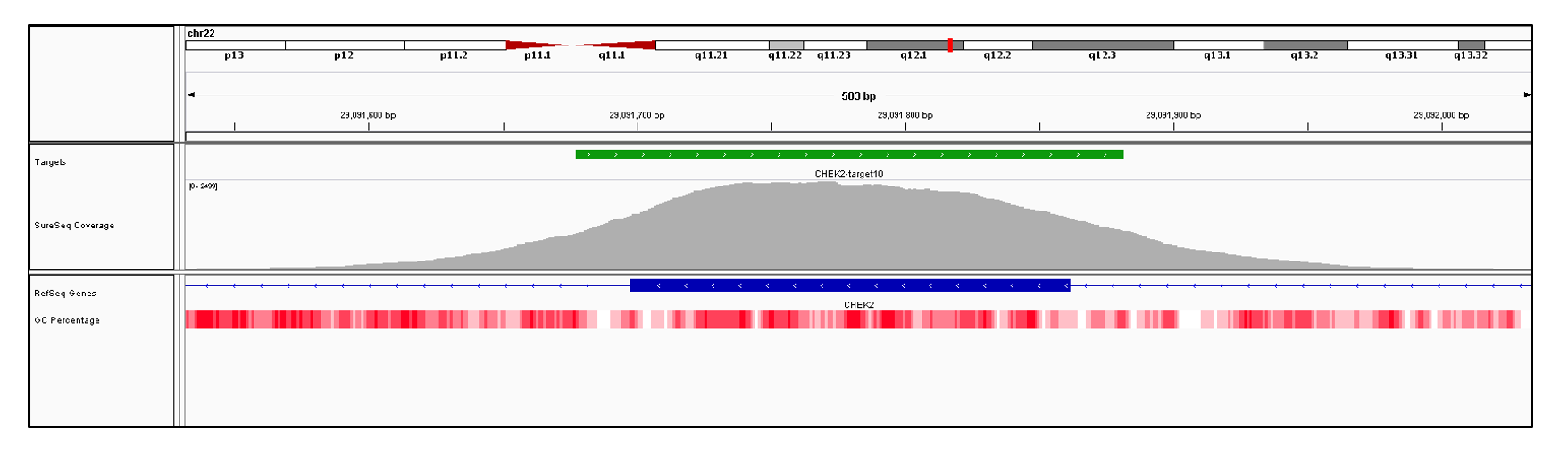 CHEK2 Exon 10 (hg19 chr22:29091698-29091861). Depth of coverage per base (grey). Targeted region (green). Gene coding region as defined by RefSeq (blue). GC percentage (red). Image