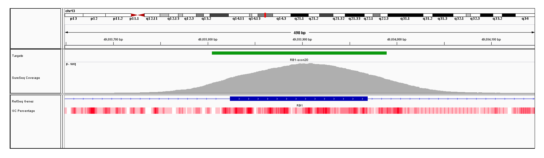 RB1 Exon 20 (hg19 chr13:49033824-49033969). Depth of coverage per base (grey). Targeted region (green). Gene coding region as defined by RefSeq (blue). GC percentage (red). Image