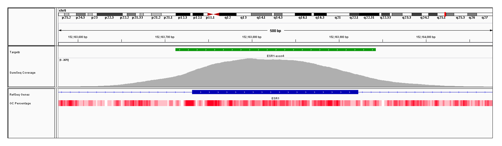 ESR1 Exon 4 (hg19 chr6:152163732-152163922). Depth of coverage per base (grey). Targeted region (green). Gene coding region as defined by RefSeq (blue). GC percentage (red). Image